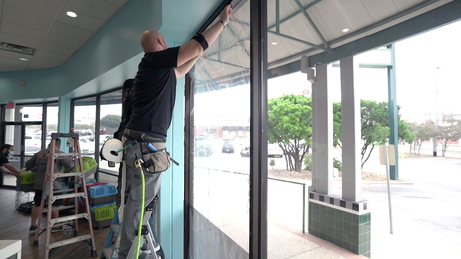VISION Home & Office Window Film - Security Film on A Pet Store