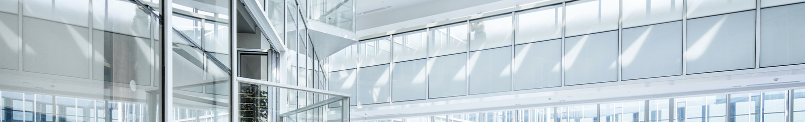 VISION Home & Office Window Film